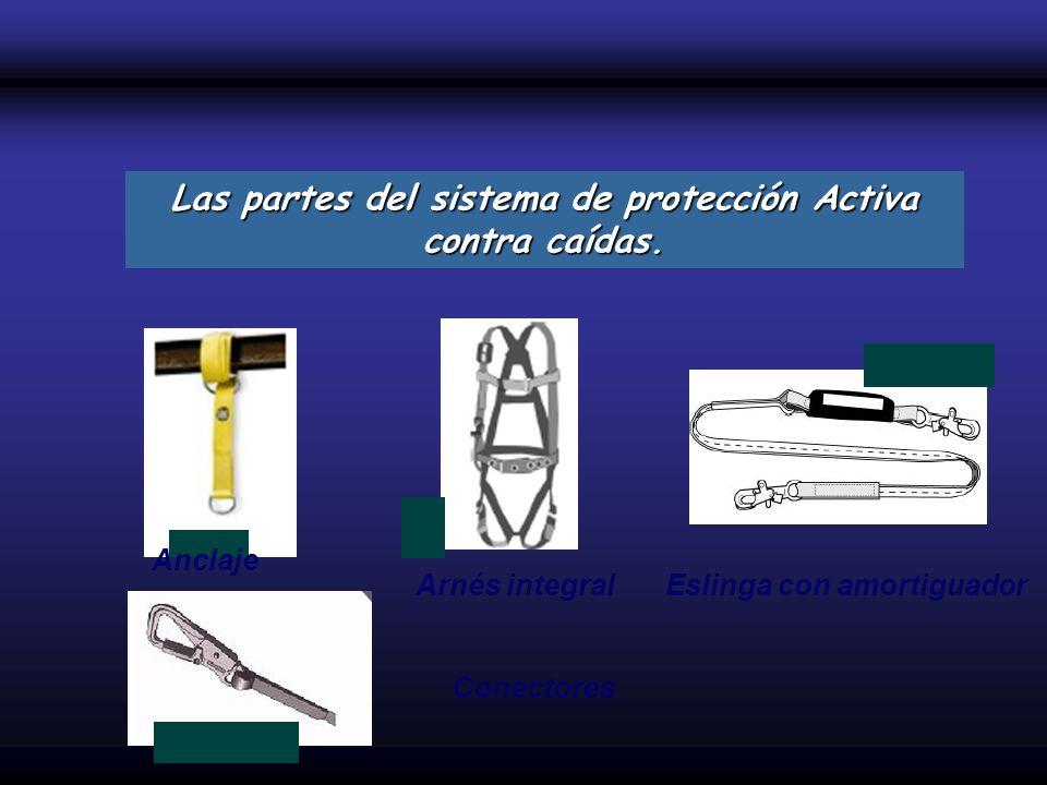 Las partes del sistema de protección Activa contra caídas.