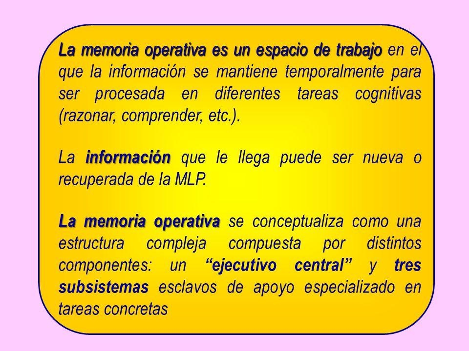 La información que le llega puede ser nueva o recuperada de la MLP.