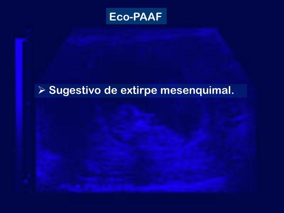 Eco-PAAF Sugestivo de extirpe mesenquimal.