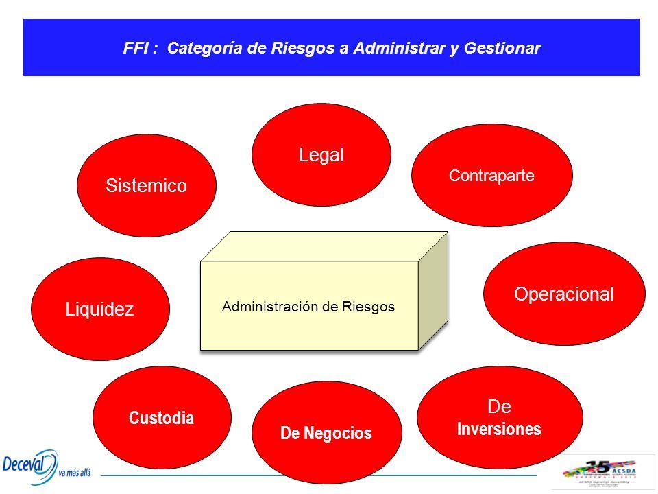 FFI : Categoría de Riesgos a Administrar y Gestionar