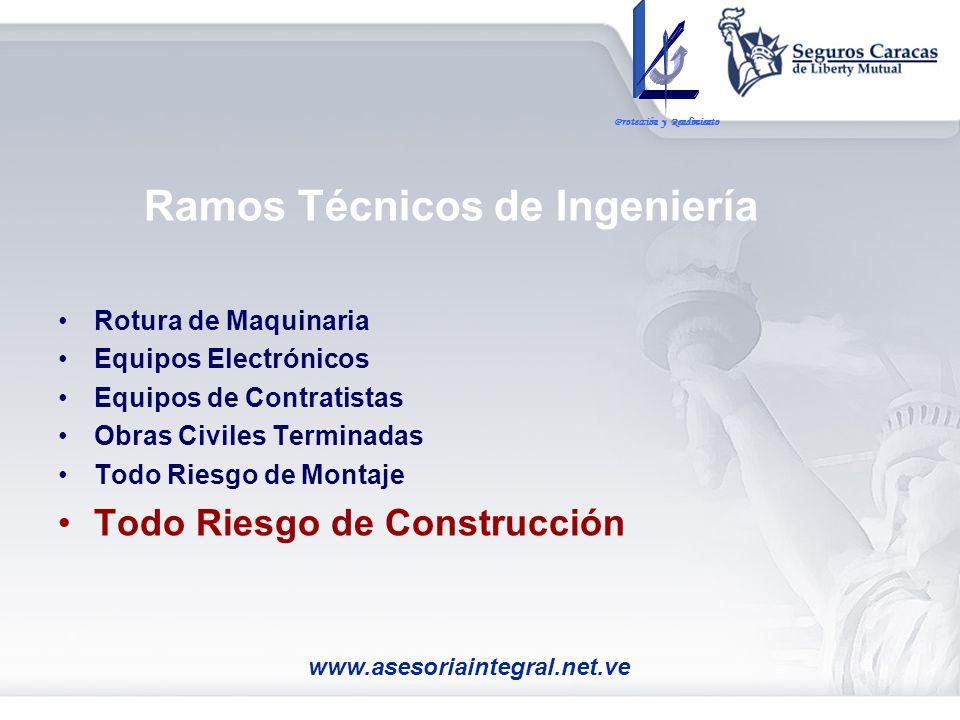 Ramos Técnicos de Ingeniería