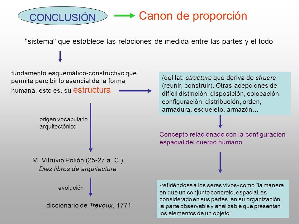 Canon de proporción CONCLUSIÓN