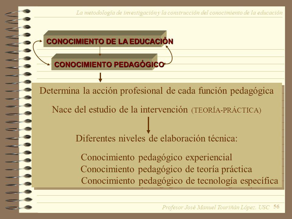 Determina la acción profesional de cada función pedagógica