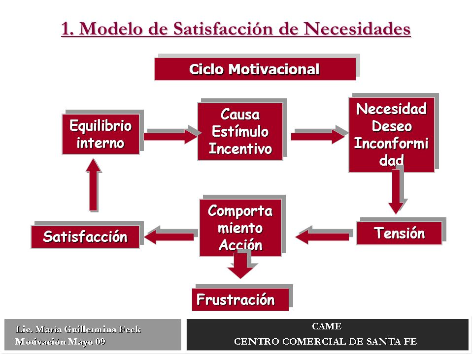 1. Modelo de Satisfacción de Necesidades
