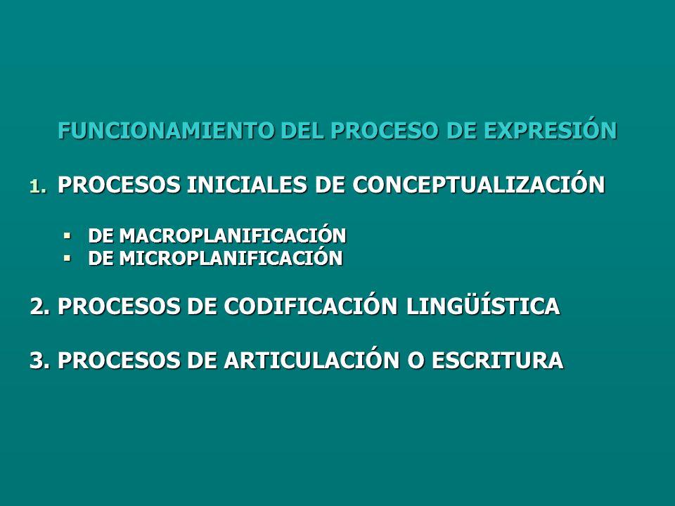 FUNCIONAMIENTO DEL PROCESO DE EXPRESIÓN