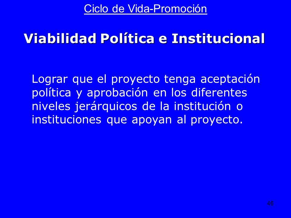 Viabilidad Política e Institucional