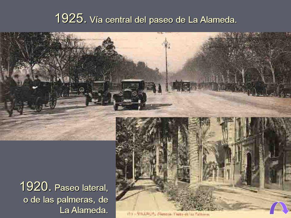 1925. Vía central del paseo de La Alameda.
