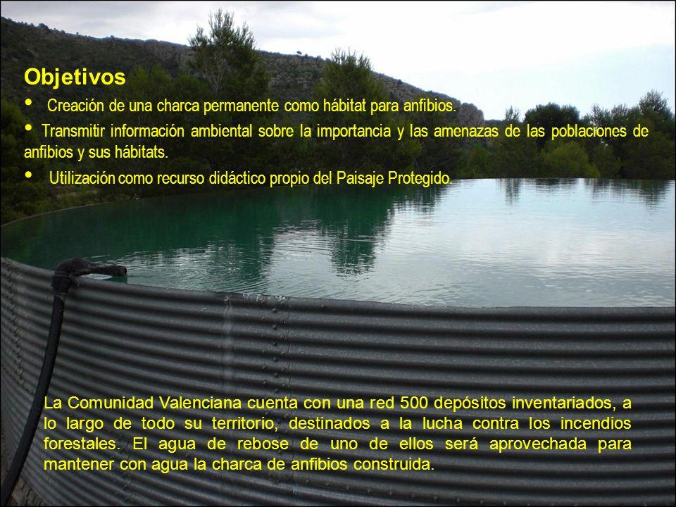 Creación de una charca permanente como hábitat para anfibios.