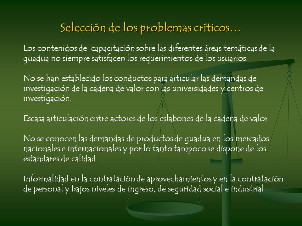 Selección de los problemas críticos…