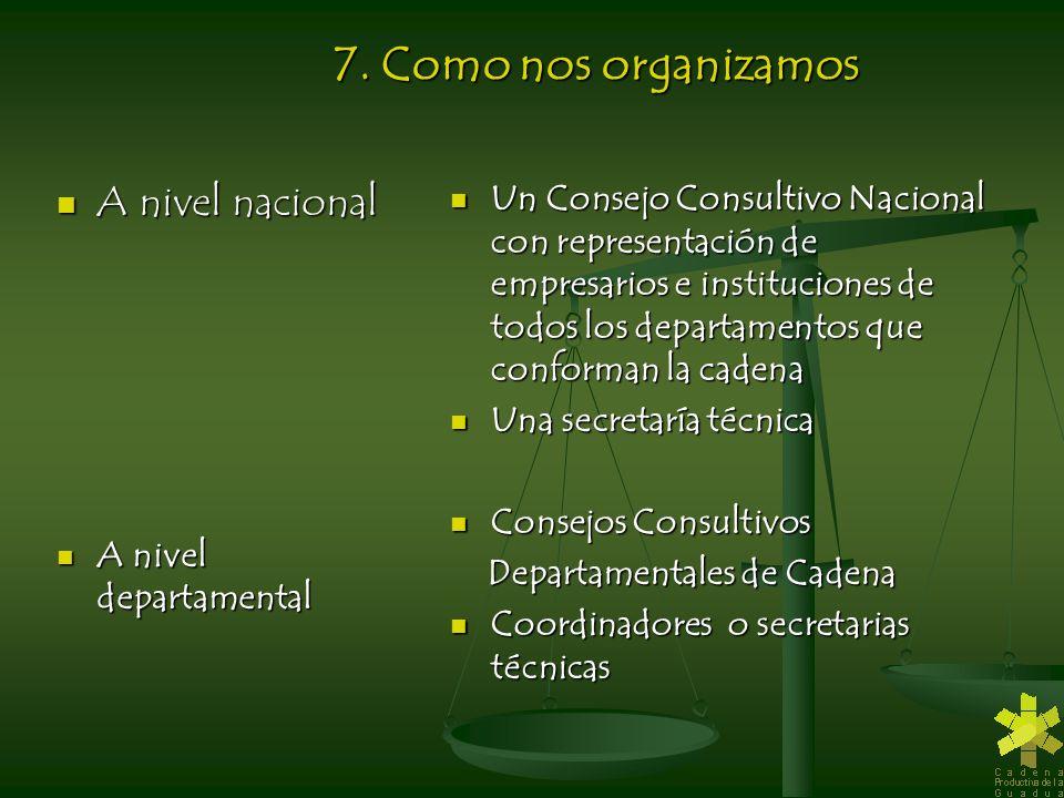 7. Como nos organizamos A nivel nacional