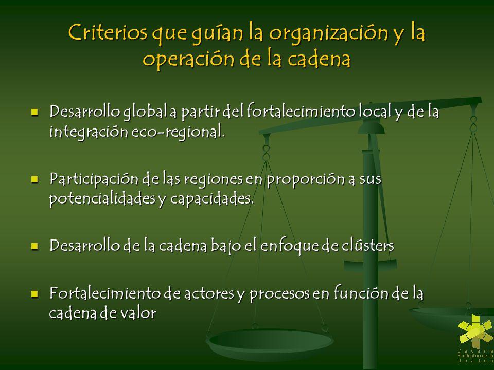 Criterios que guían la organización y la operación de la cadena