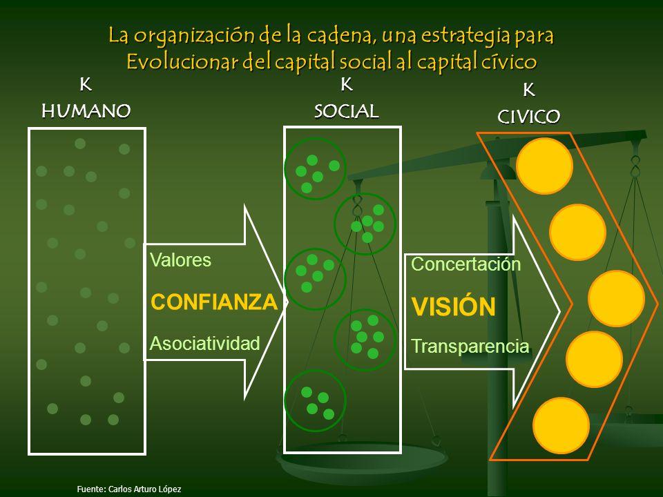 VISIÓN La organización de la cadena, una estrategia para