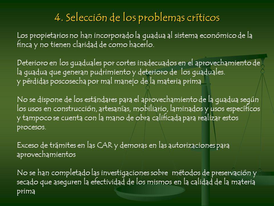 4. Selección de los problemas críticos
