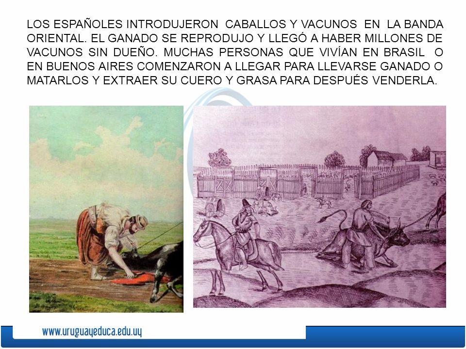LOS ESPAÑOLES INTRODUJERON CABALLOS Y VACUNOS EN LA BANDA ORIENTAL