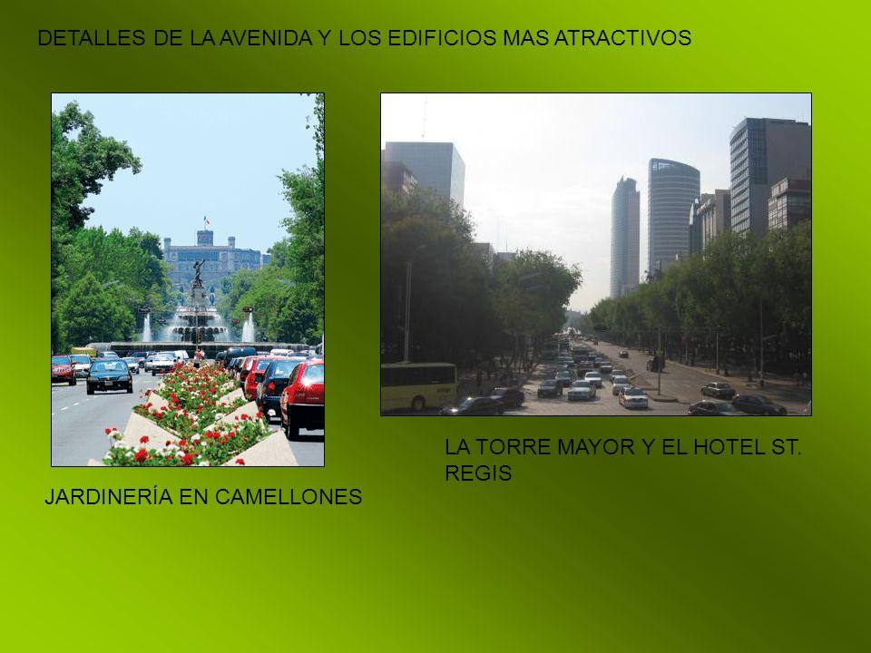DETALLES DE LA AVENIDA Y LOS EDIFICIOS MAS ATRACTIVOS