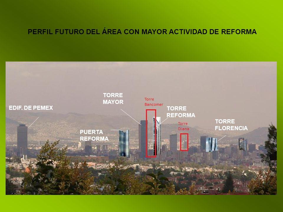 PERFIL FUTURO DEL ÁREA CON MAYOR ACTIVIDAD DE REFORMA