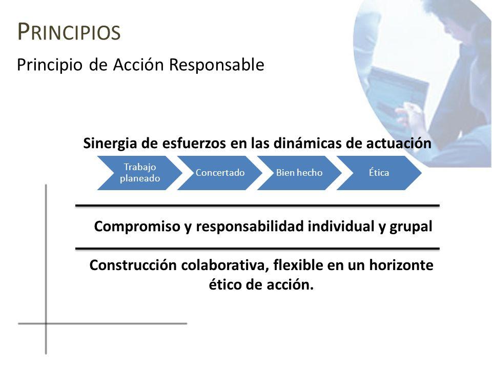 Principios Principio de Acción Responsable