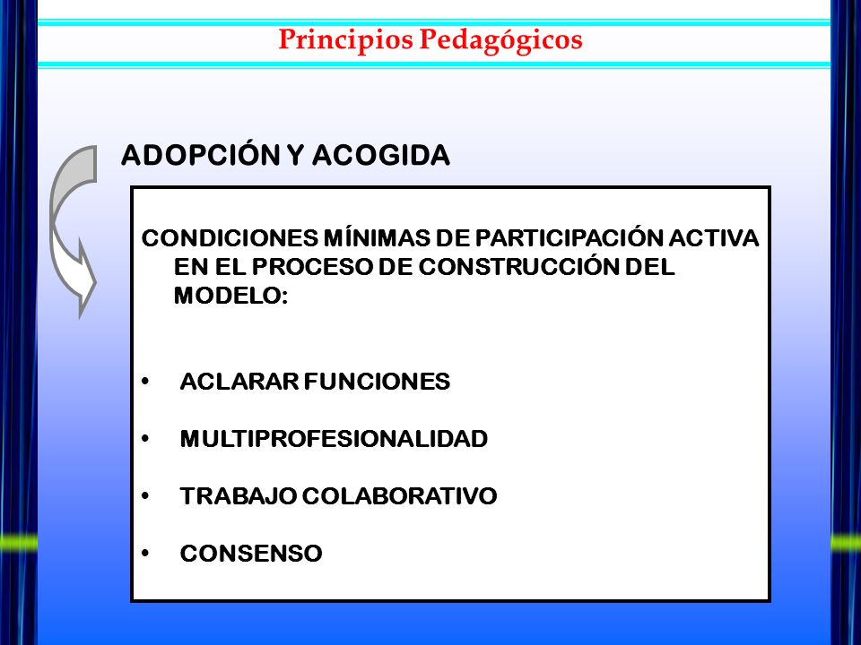 Principios Pedagógicos