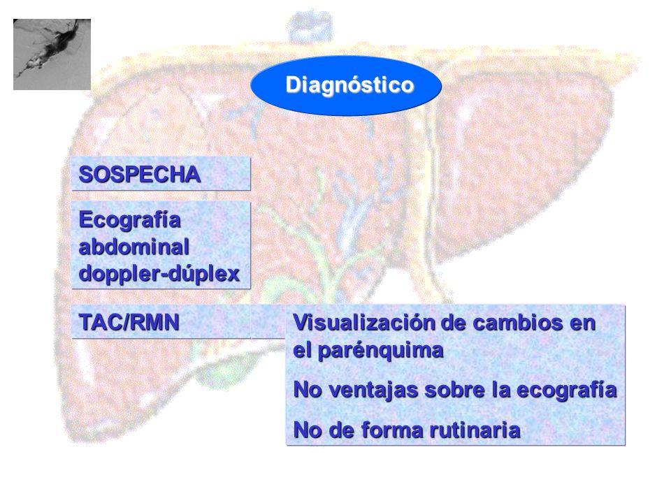 Diagnóstico SOSPECHA. Ecografía abdominal doppler-dúplex. TAC/RMN. Visualización de cambios en el parénquima.