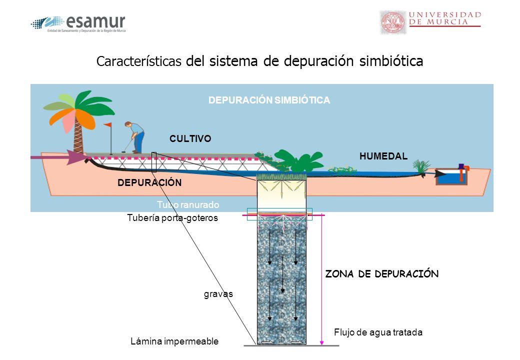 Características del sistema de depuración simbiótica