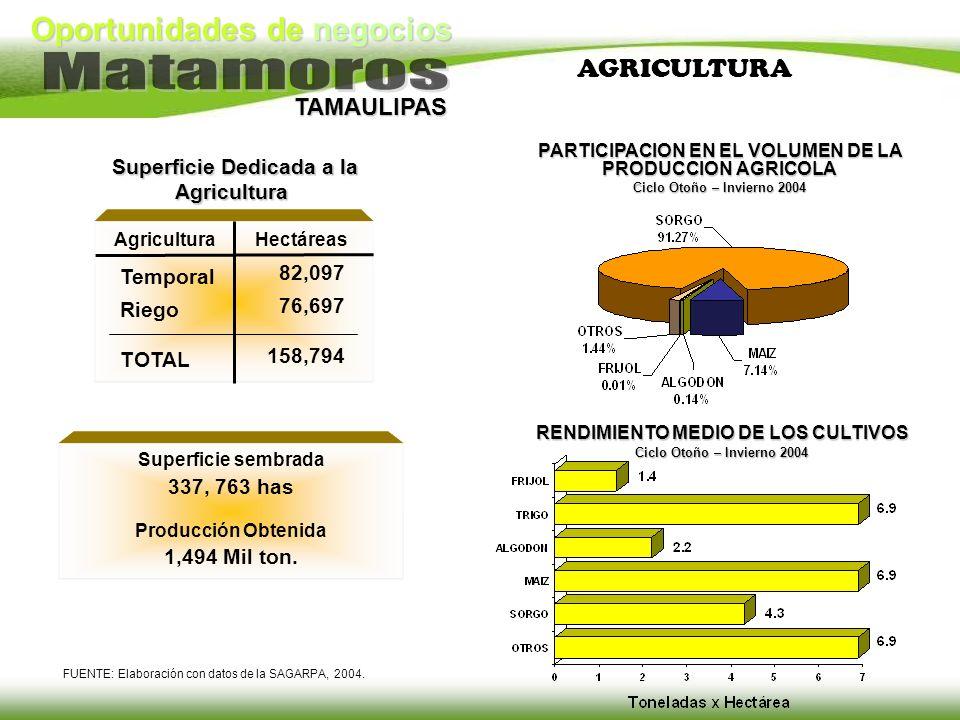 AGRICULTURA Superficie Dedicada a la Agricultura 82,097 Temporal