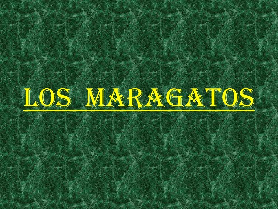 LOS MARAGATOS