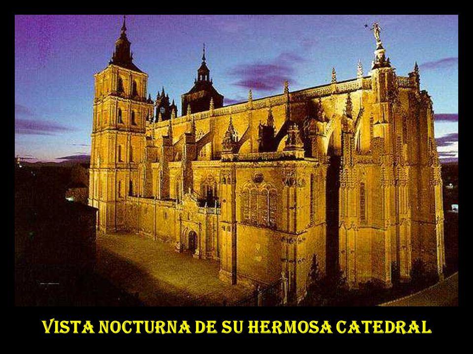 VISTA NOCTURNA DE SU HERMOSA CATEDRAL