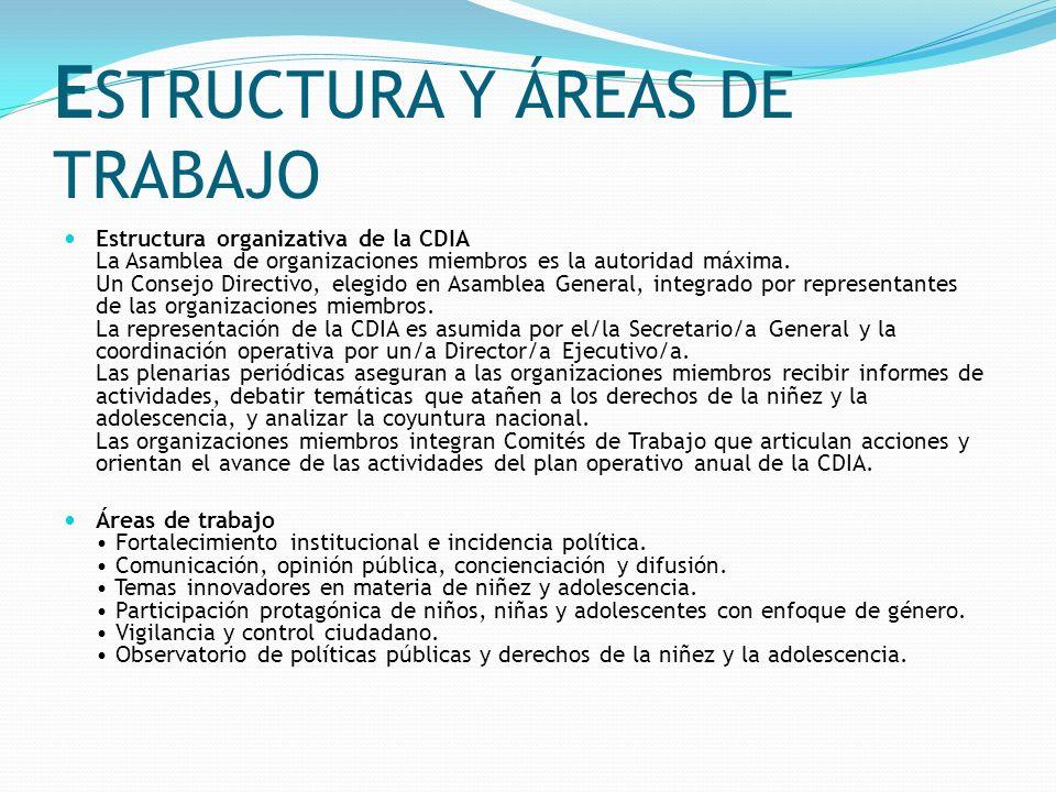 ESTRUCTURA Y ÁREAS DE TRABAJO