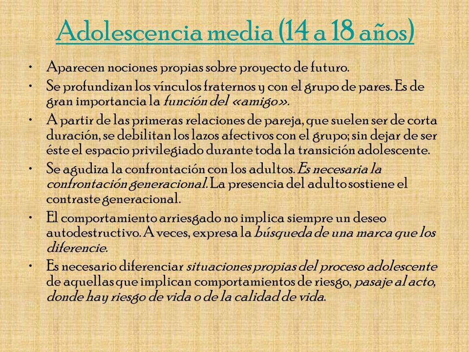 Adolescencia media (14 a 18 años)