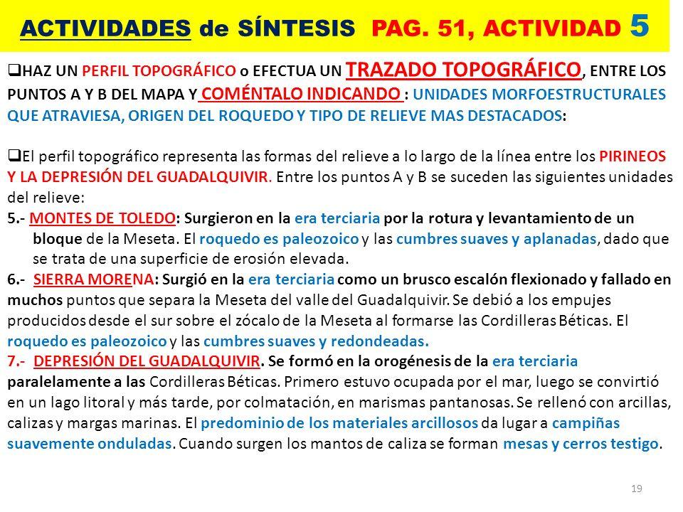 ACTIVIDADES de SÍNTESIS PAG. 51, ACTIVIDAD 5
