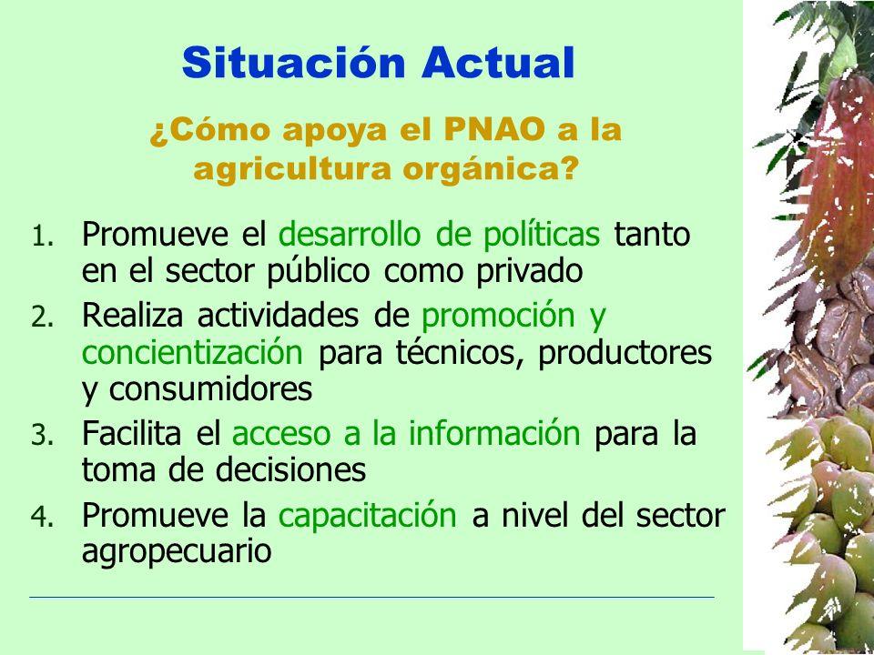 Situación Actual ¿Cómo apoya el PNAO a la. agricultura orgánica Promueve el desarrollo de políticas tanto en el sector público como privado.