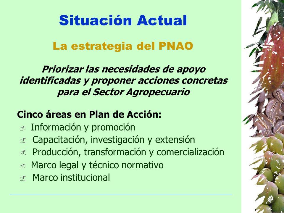 Situación Actual La estrategia del PNAO