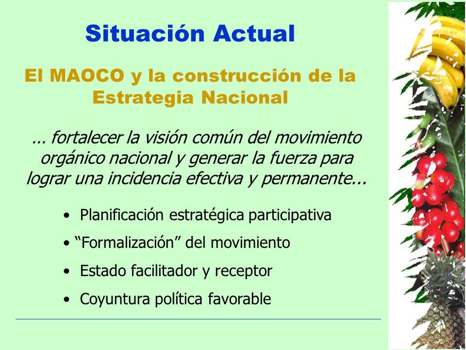 El MAOCO y la construcción de la Estrategia Nacional