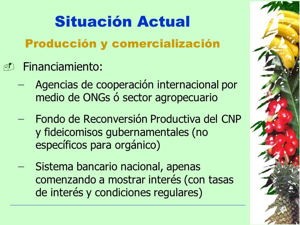 Producción y comercialización