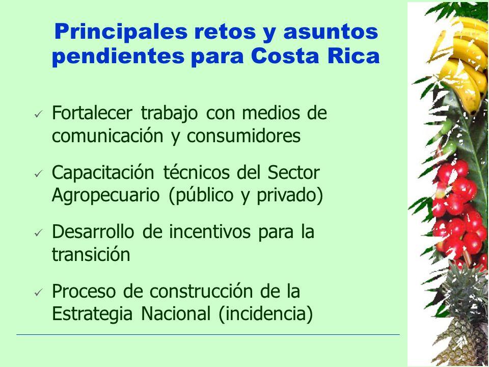 Principales retos y asuntos pendientes para Costa Rica