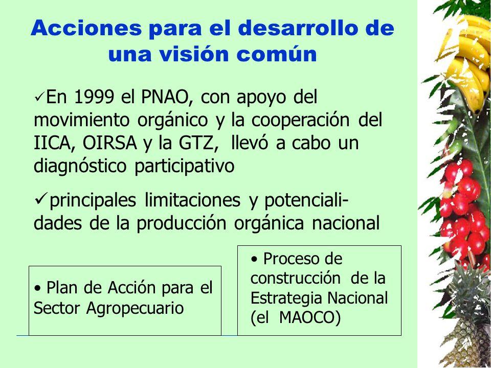 Acciones para el desarrollo de una visión común