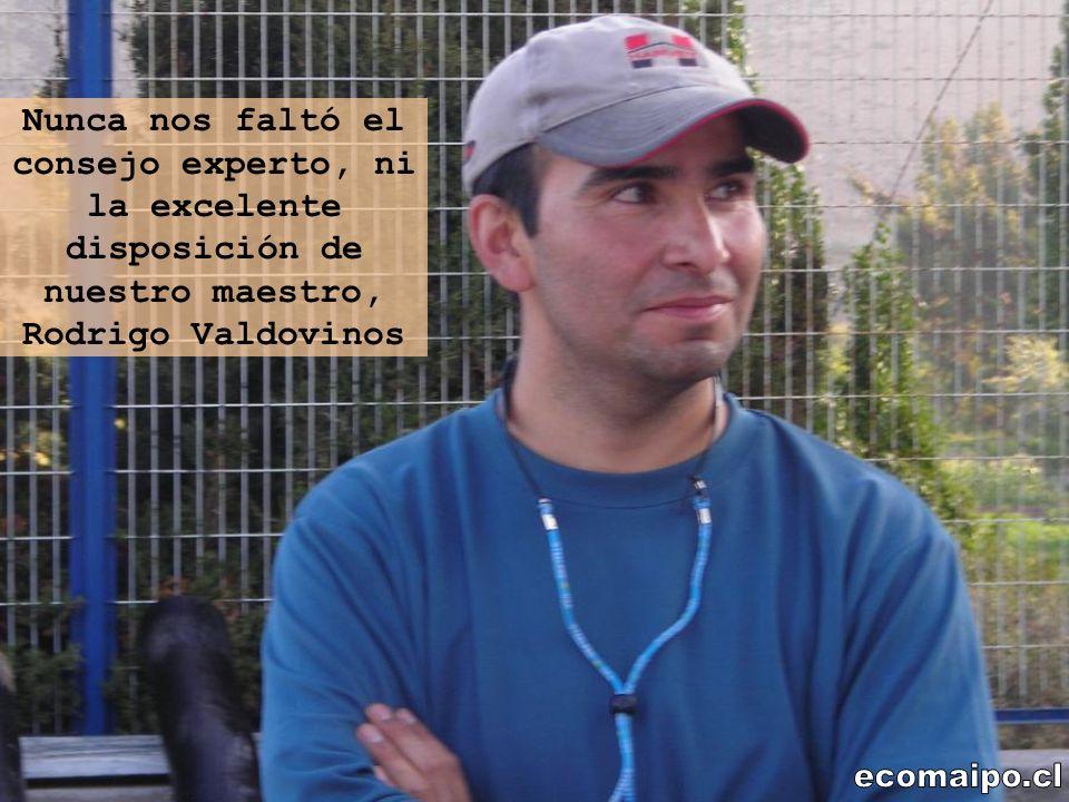Nunca nos faltó el consejo experto, ni la excelente disposición de nuestro maestro, Rodrigo Valdovinos