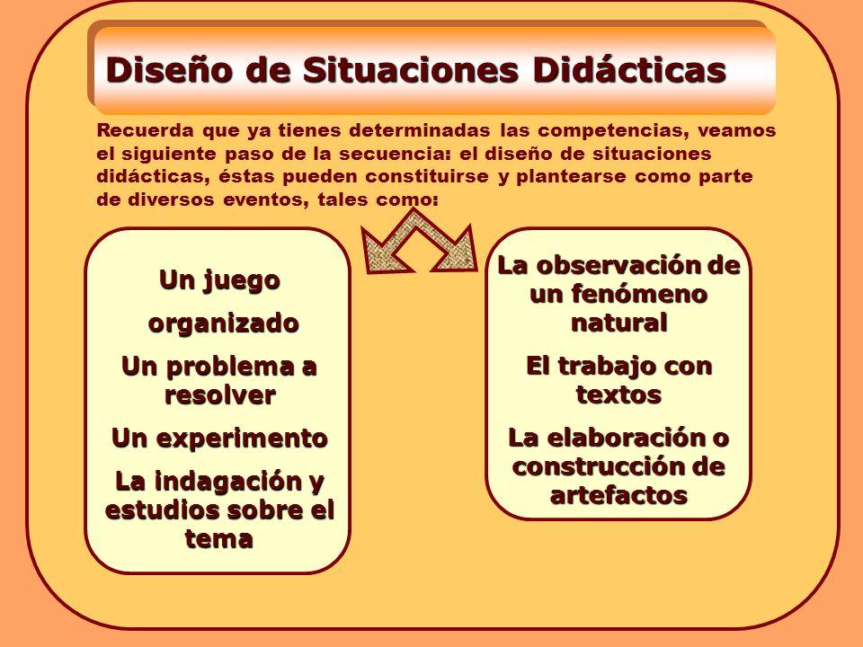 Diseño de Situaciones Didácticas