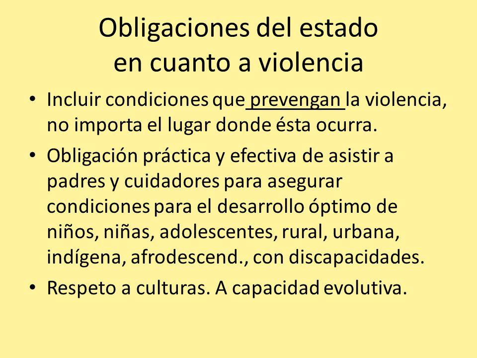 Obligaciones del estado en cuanto a violencia