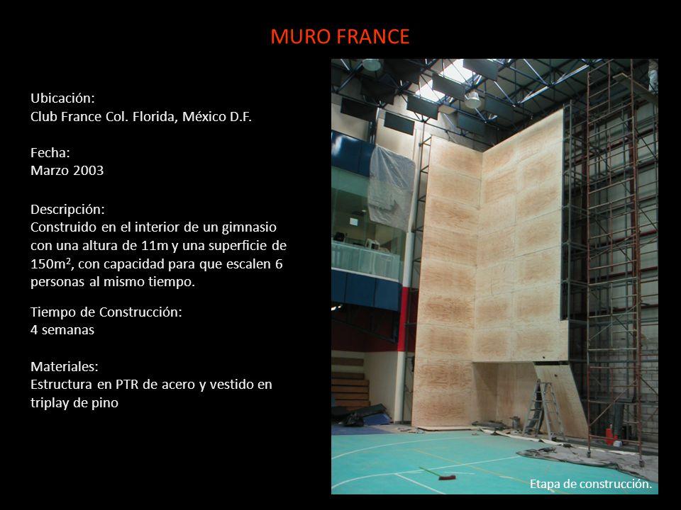 MURO FRANCE Ubicación: Club France Col. Florida, México D.F. Fecha: