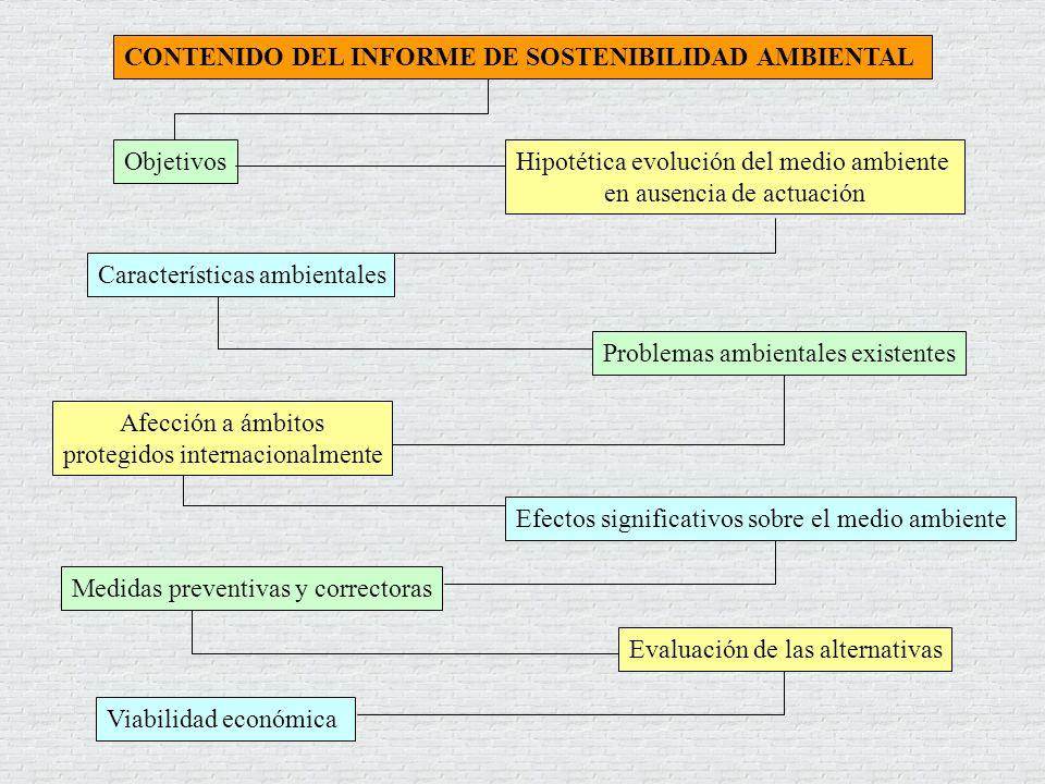 CONTENIDO DEL INFORME DE SOSTENIBILIDAD AMBIENTAL