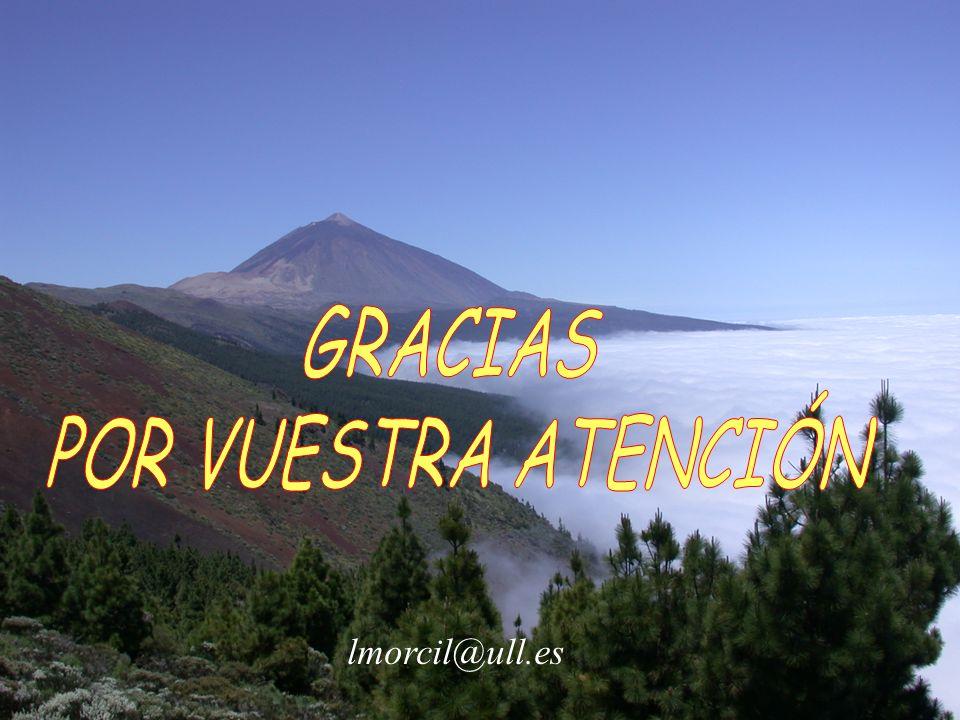 GRACIAS POR VUESTRA ATENCIÓN lmorcil@ull.es