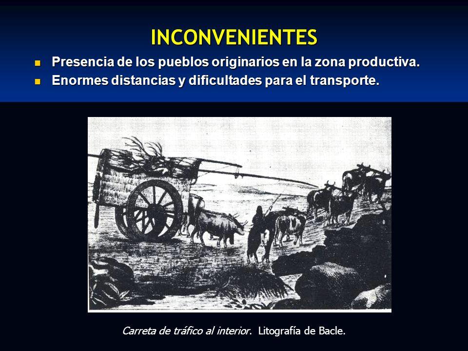 INCONVENIENTES Presencia de los pueblos originarios en la zona productiva. Enormes distancias y dificultades para el transporte.