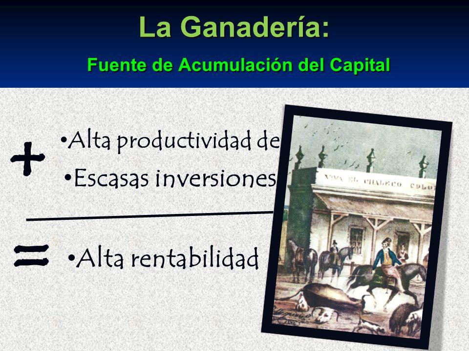 La Ganadería: Fuente de Acumulación del Capital
