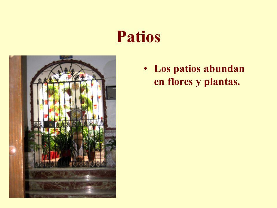 Patios Los patios abundan en flores y plantas.