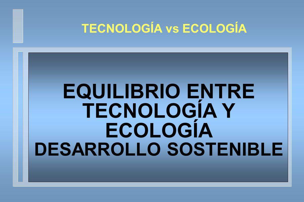 EQUILIBRIO ENTRE TECNOLOGÍA Y ECOLOGÍA