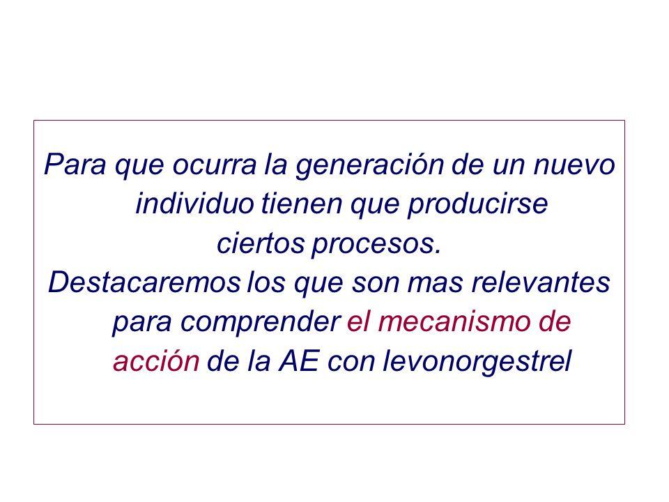 Para que ocurra la generación de un nuevo individuo tienen que producirse ciertos procesos.