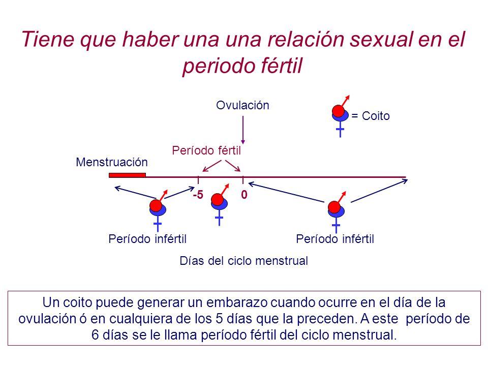 Tiene que haber una una relación sexual en el periodo fértil