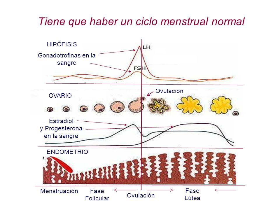 Tiene que haber un ciclo menstrual normal