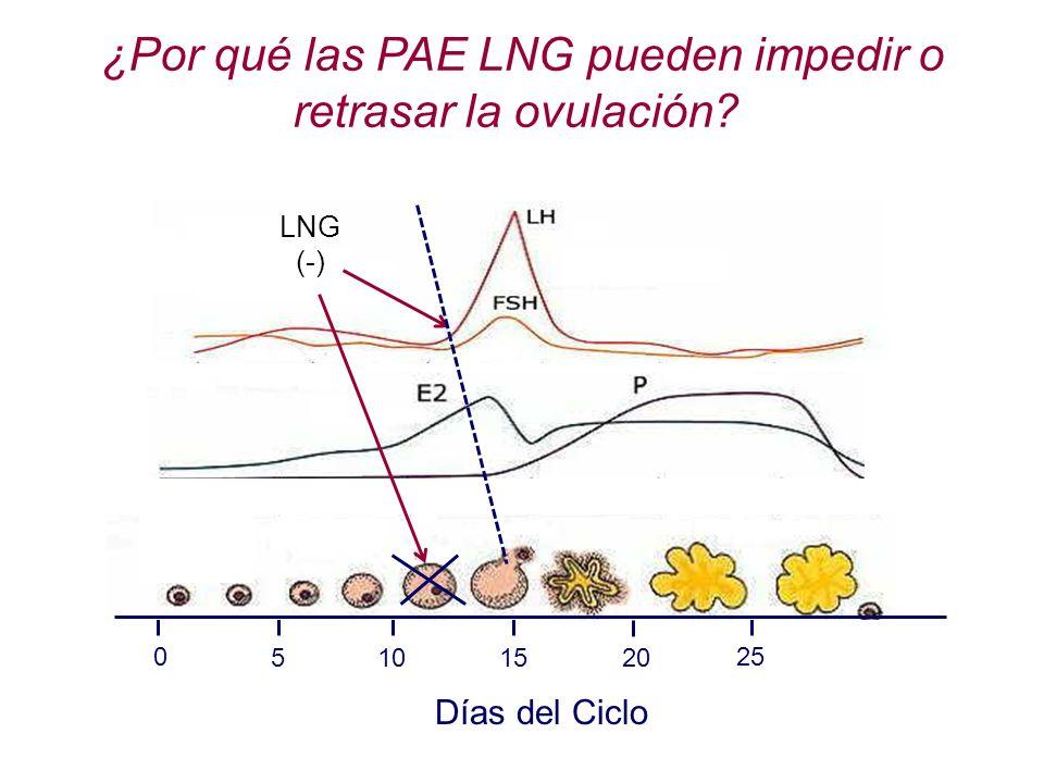 ¿Por qué las PAE LNG pueden impedir o retrasar la ovulación
